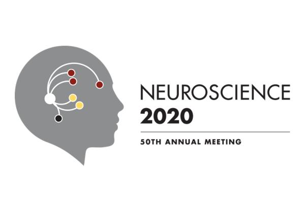 S-f-N 2020 logo